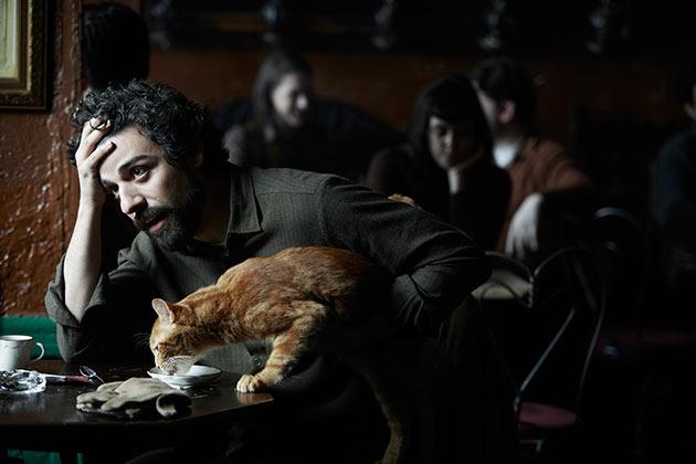 Oscar Isaac ja kissa
