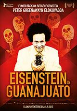 Eisenstein in Guanajuato, poster