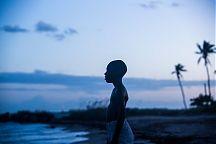 Moonlight sai kahdeksan Oscar-ehdokkuutta