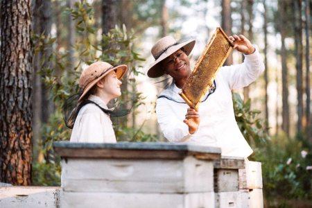 Lily, August ja mehiläisten salaisuudet