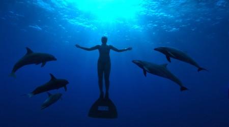 Mandy-Rae Cruikshank ja delfiinit