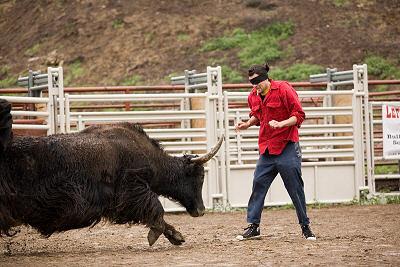 Johnny Knoxville ottaa härkää sarvista...