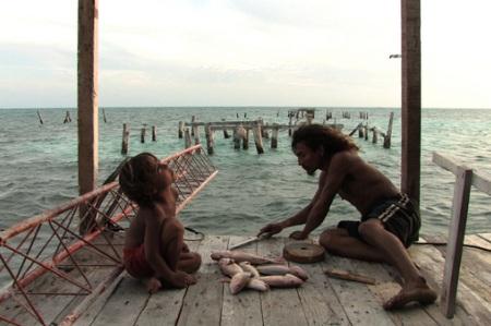 Alamar - To the Sea